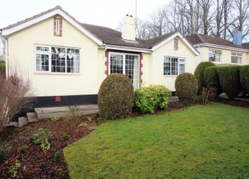 Thumbnail 3 bed bungalow for sale in Newton Road, Torquay