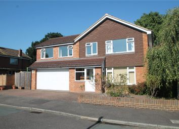 Thumbnail 4 bed detached house to rent in Loampits Close, Tonbridge