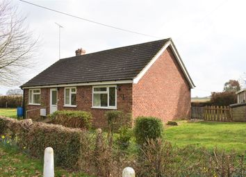 Thumbnail 3 bed detached bungalow to rent in Salmons Lane, Thorrington, Colchester