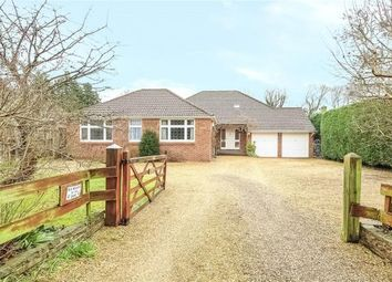 Thumbnail 5 bed detached bungalow for sale in Jigs Lane South, Warfield, Bracknell