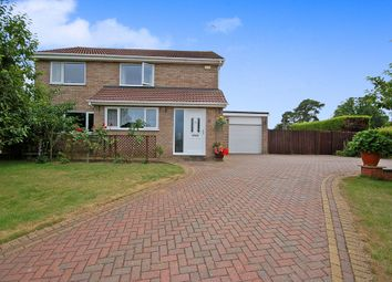 Thumbnail 4 bedroom detached house for sale in Brandon Road, Thetford