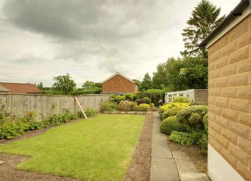 Thumbnail 3 bed semi-detached house for sale in Hollins Road, Harrogate