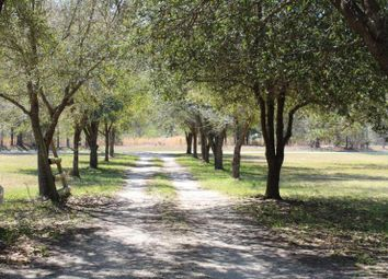 Thumbnail 4 bed property for sale in Andrews, South Carolina, United States Of America