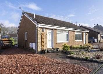 Thumbnail 1 bed bungalow for sale in Alyth Drive, Polmont, Falkirk