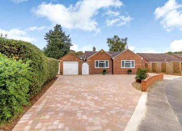 Thumbnail 3 bed detached bungalow for sale in Ottershaw, Surrey
