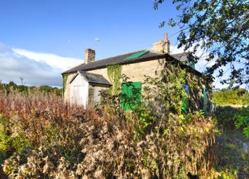 3 bed detached house for sale in Alnwick NE66