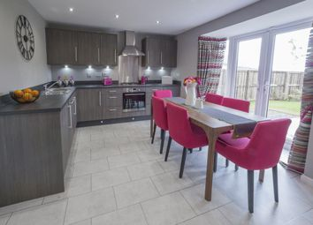 "Thumbnail 4 bed detached house for sale in ""Fernie"" at Mey Avenue, Inverness"
