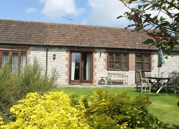 Thumbnail 2 bed semi-detached bungalow to rent in East Pennard, Somerset