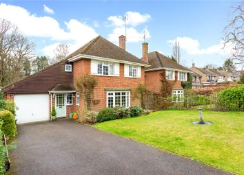 Thumbnail 4 bedroom detached house for sale in Ashcombe, Chiddingfold, Godalming, Surrey