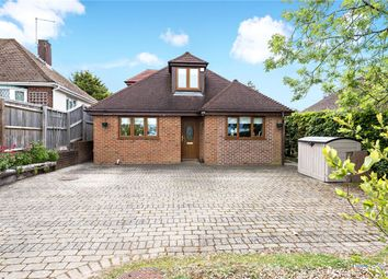 4 bed detached bungalow for sale in Old Kennels Lane, Winchester, Hampshire SO22