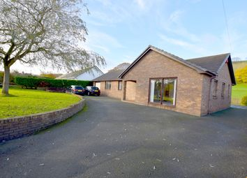 Thumbnail 4 bed bungalow for sale in Lon Rhydygwin, Aberystwyth