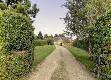 Thumbnail 5 bed detached house for sale in Warthill, York