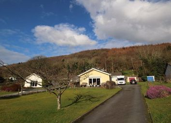 Thumbnail Room to rent in Goginan, Aberystwyth