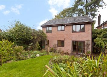 Thumbnail 4 bed detached house to rent in Hood Close, Bournemouth, Dorset