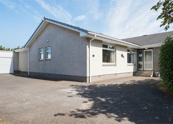 Thumbnail 4 bed detached bungalow for sale in Ben More Avenue, Montrose, Angus