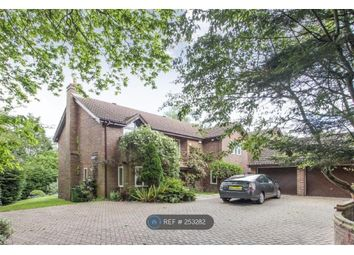 Thumbnail 5 bed detached house to rent in Drax Avenue, London