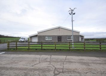 Thumbnail Property to rent in Pantyffynnon Hatchery Warehouse, Llanddarog
