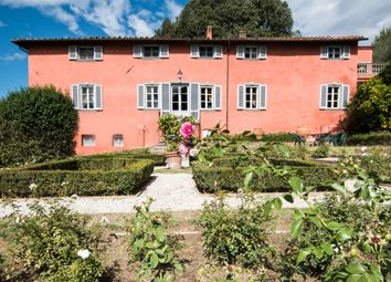 Thumbnail 12 bed town house for sale in Via di Igia, Lucca, Lucca