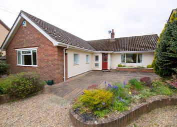 Thumbnail 2 bedroom detached house for sale in Romany Road, Lowestoft