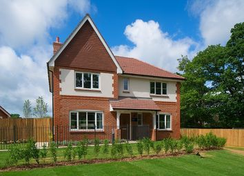 "4 bed property for sale in ""The Orchard"" at Horsham Road, Cranleigh GU6"
