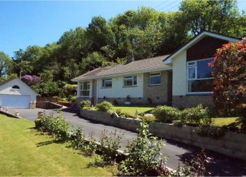 Thumbnail 4 bedroom detached bungalow for sale in Milltown, Barnstaple