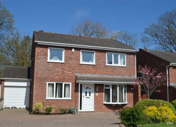 Thumbnail 4 bed detached house for sale in 30 Valley Way, Exmouth, Devon
