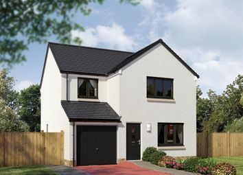 "Thumbnail 4 bedroom detached house for sale in ""The Leith"" at Invergowrie, Dundee"