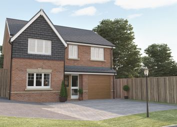 Thumbnail 4 bed detached house for sale in Yew Tree Court, Austrey, Atherstone