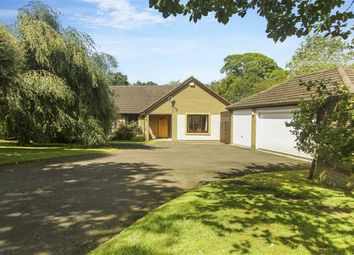 Thumbnail 3 bed bungalow for sale in Oaklands Rise, Riding Mill, Northumberland