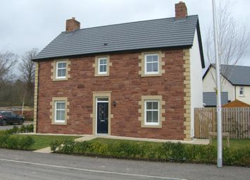 Thumbnail 4 bedroom detached house for sale in Loaning Dale Avenue, Biggar South, Lanarkshire