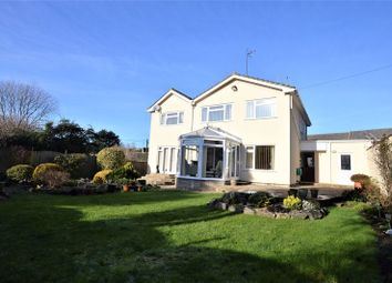 Thumbnail 5 bed link-detached house for sale in Mulberry Lane, Bleadon Village, North Somerset