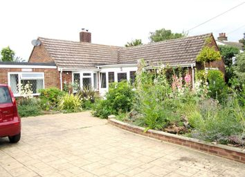 Thumbnail 4 bed detached bungalow for sale in Grove Hill, Belstead, Ipswich