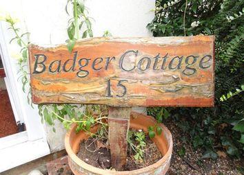 Thumbnail 2 bedroom cottage to rent in Badger Cottage, High Green, Brooke