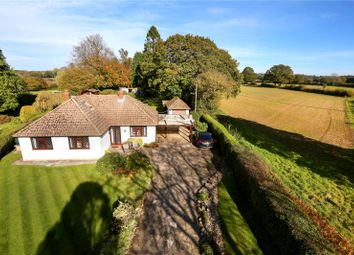 Thumbnail 3 bed detached bungalow for sale in Kitwood Lane, Ropley, Alresford, Hampshire
