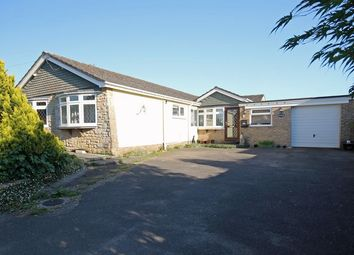 Thumbnail Bungalow for sale in Lodge Drove, Woodfalls, Salisbury
