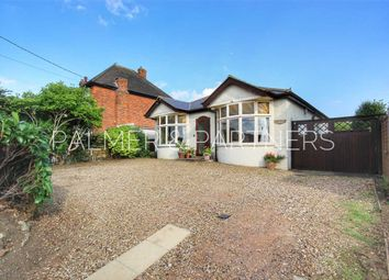 Thumbnail 4 bed detached bungalow for sale in Waldingfield Road, Sudbury
