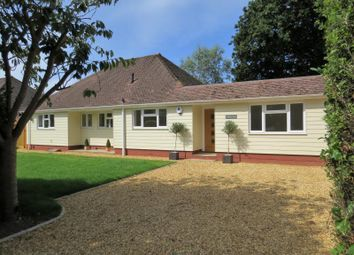 Thumbnail 4 bed bungalow for sale in Barton Court Avenue, New Milton