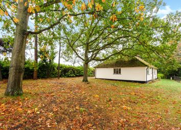 Thumbnail 3 bed bungalow to rent in Coxs Lane, Upper Bucklebury, Reading