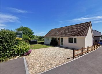 Thumbnail 3 bed detached bungalow for sale in Combe St. Nicholas, Chard, Somerset