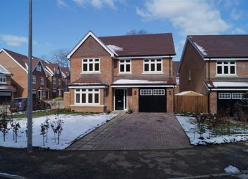 Thumbnail 4 bed detached house to rent in Blackstone Way, Earley, Reading