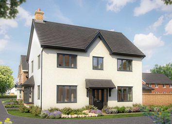 """""""The Phoenix Range -Chestnut"""" at Gidding Road, Sawtry, Huntingdon PE28. 4 bed detached house for sale"""