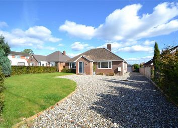 Thumbnail 4 bed detached bungalow for sale in Henwick Lane, Thatcham, Berkshire