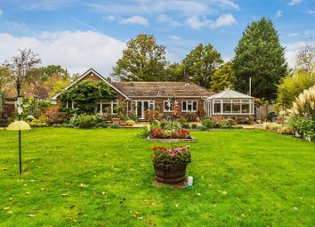 Thumbnail 5 bed detached bungalow for sale in Chalk Road, Loxwood, Billingshurst