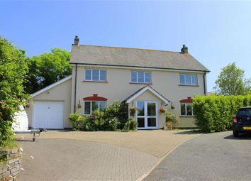 Thumbnail 4 bed detached house for sale in Jameston, Tenby