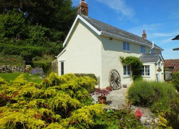 Thumbnail 4 bed detached house for sale in Charmouth, Bridport