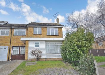 Thumbnail 4 bed detached house to rent in Smarts Green, Cheshunt, Waltham Cross