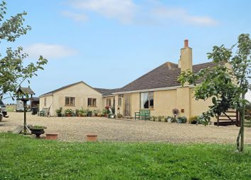Thumbnail 4 bedroom bungalow for sale in Bucknall, Woodhall Spa