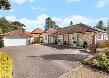 Thumbnail 4 bed detached bungalow for sale in Amberley Road, Storrington, West Sussex
