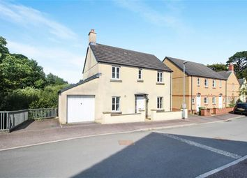 Thumbnail 3 bed detached house for sale in Harlseywood, Bideford