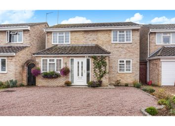 Thumbnail 4 bed detached house for sale in Winston Way, Halstead